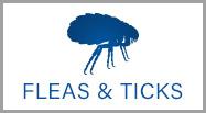 flea tick control